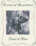 Angel of Hope.pdf